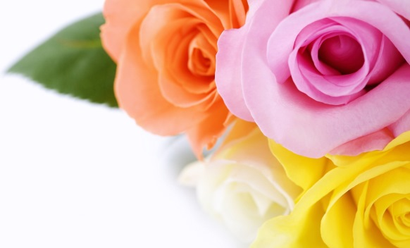 Rose-bouquet_1366x768.jpg