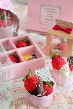 可愛いチョコフルーツ (10)