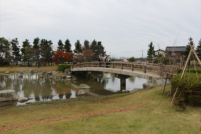 20151206f.jpg