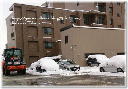 001-雪151218-1213