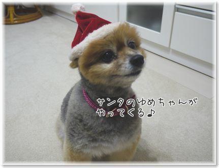 001-クリスマスtRf0Stofeie71Ev1450964456_1450964529
