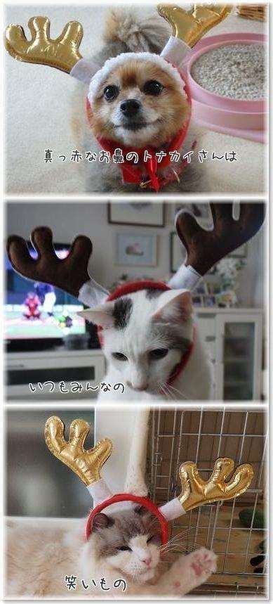 001-クリスマスmkHeDszn3wp0UPi1450964545_1450964894-2