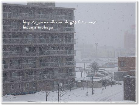 001-ホワイトクリスマス1512251220