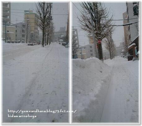 001-雪道1601221059