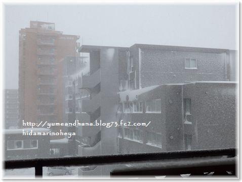 001-吹雪160210-915