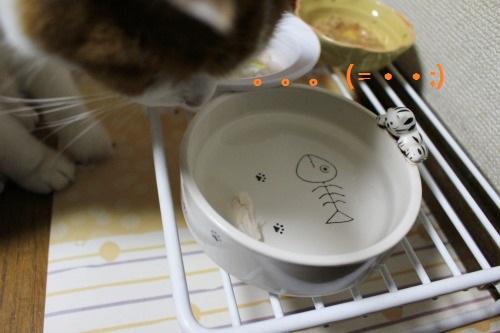 ブログNo.493(にゃ!鶏肉が!!)14