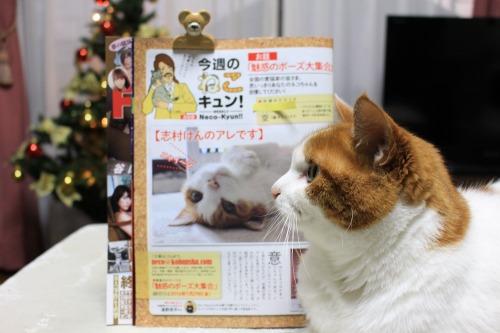 ブログNo.467【号外】本日発売FLASHに掲載されました。2
