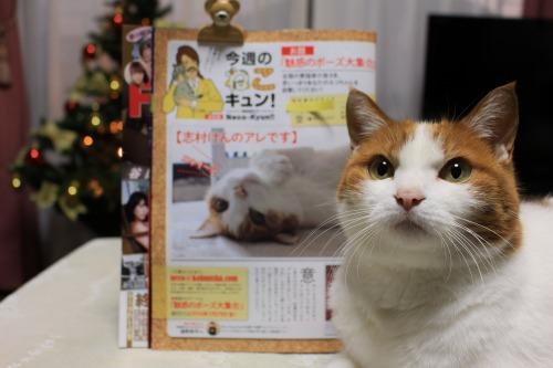 ブログNo.467【号外】本日発売FLASHに掲載されました。3