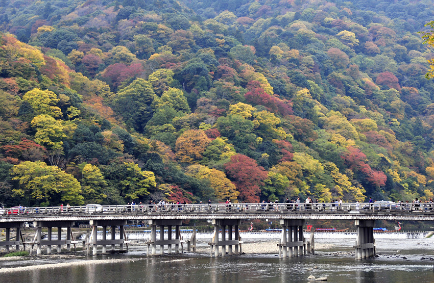 嵐山(秋)1