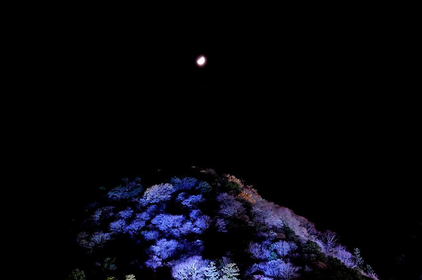 嵐山(ライトアップ)01