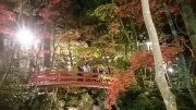 20151106松雲山荘2