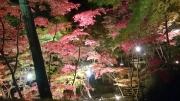 20151106松雲山荘3