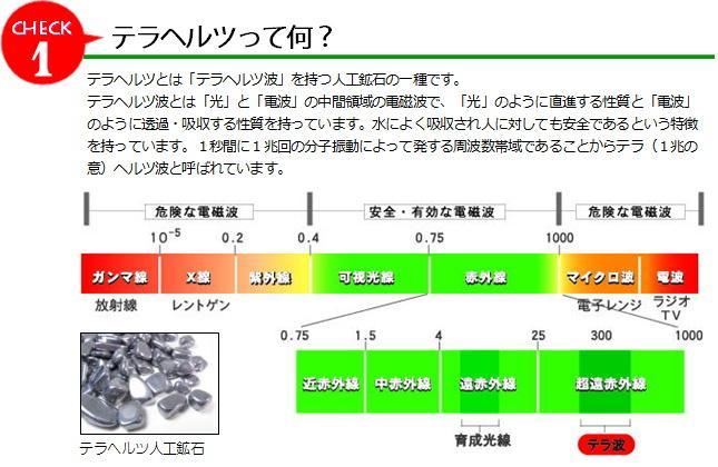 terakotei01.jpg