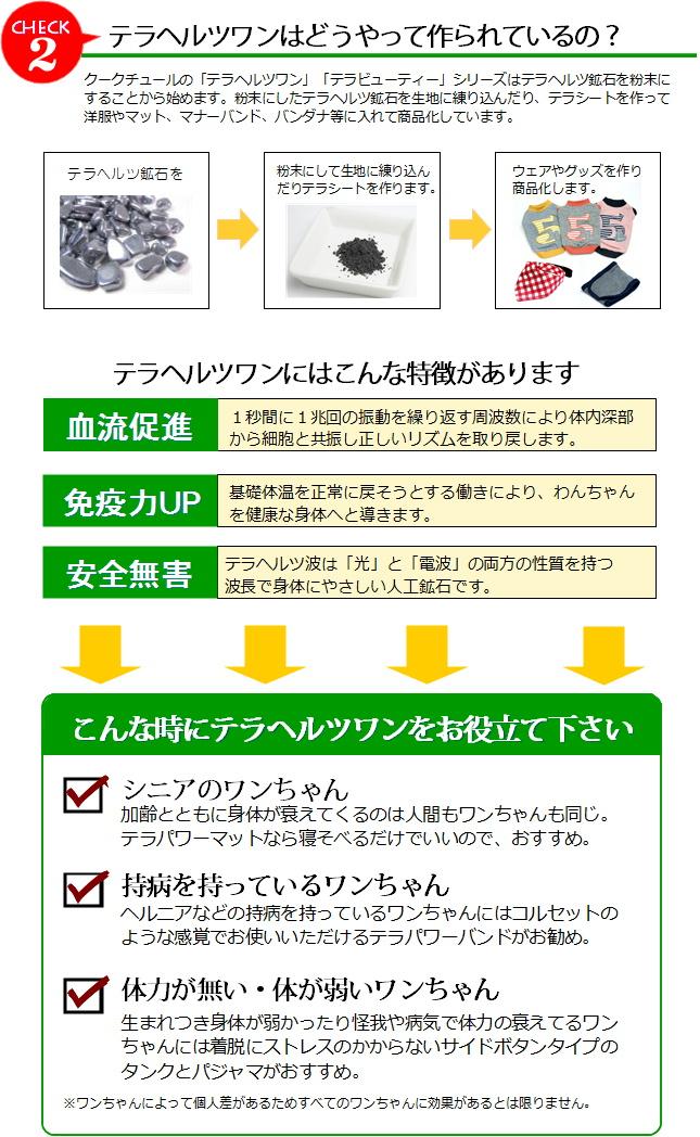 terakotei02.jpg