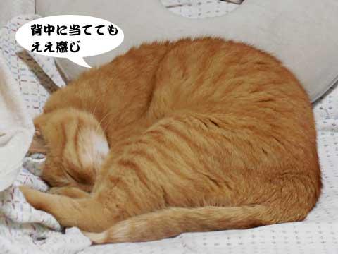 15_10_25_4.jpg