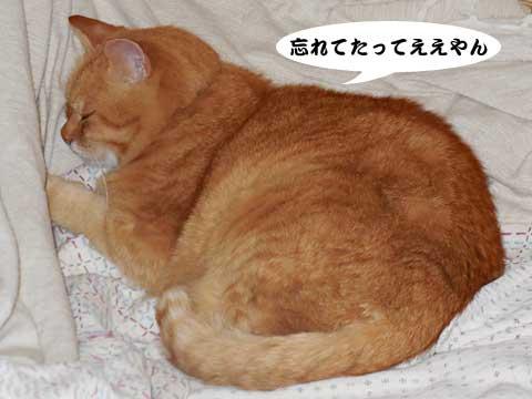 15_10_27_5.jpg