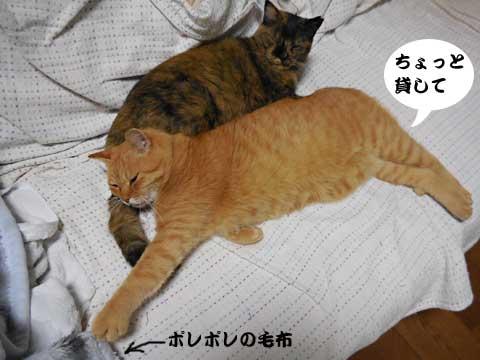 15_10_30_1.jpg