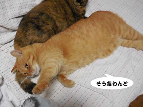 15_10_30_2.jpg