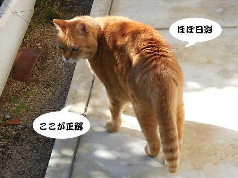 15_11_05_5.jpg