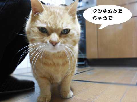 15_12_04_2.jpg