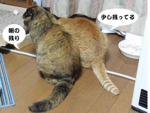 15_12_15_2.jpg