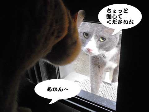 15_12_25_2.jpg