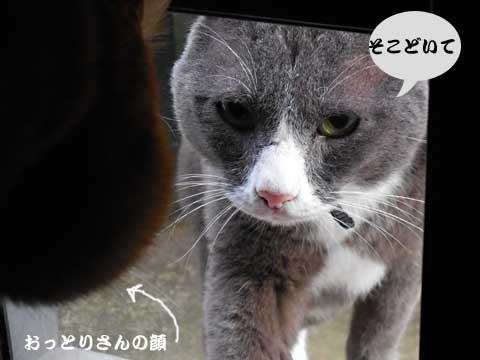 15_12_25_9.jpg