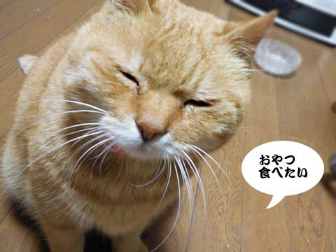 16_01_04_2.jpg