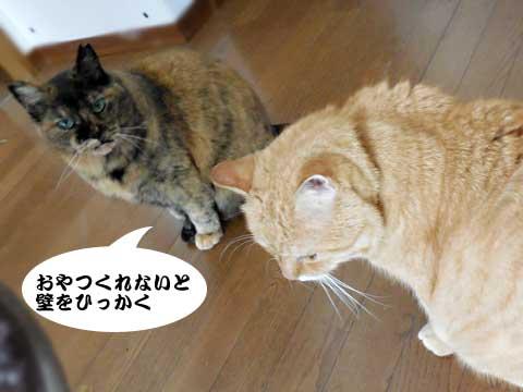 16_01_04_4.jpg