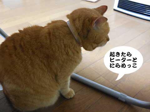 16_01_09_5.jpg