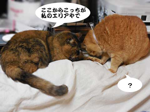 16_01_14_1.jpg