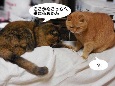 16_01_14_2.jpg