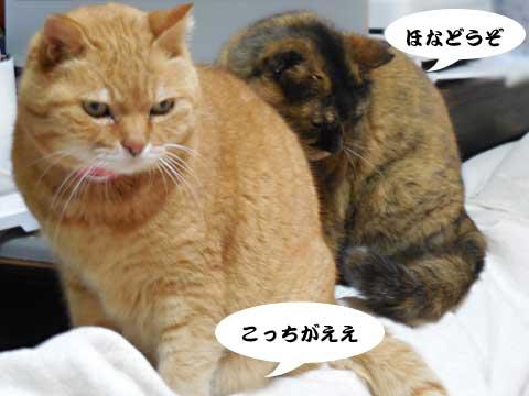 16_01_14_3.jpg
