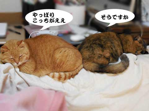 16_01_14_4.jpg
