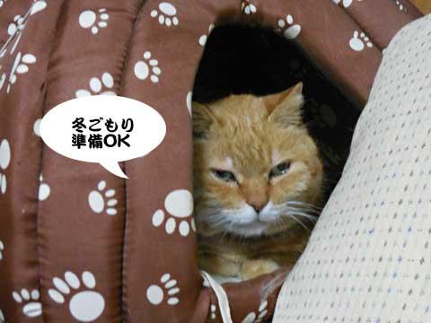 16_01_23_4.jpg