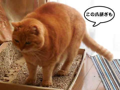16_02_03_2.jpg