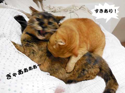 16_02_09_1.jpg