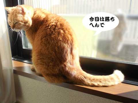 16_02_25_1.jpg