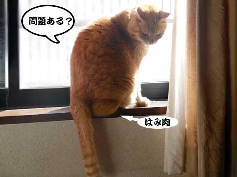 16_02_25_5.jpg