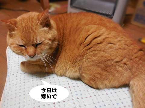 16_03_02_2.jpg