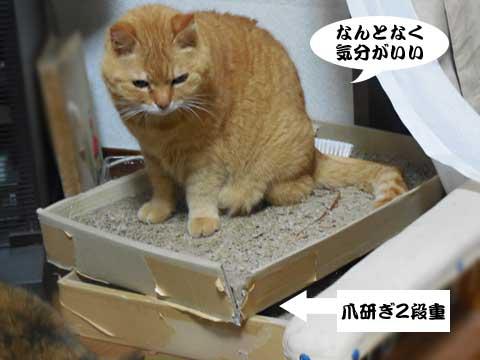 16_03_07_5.jpg