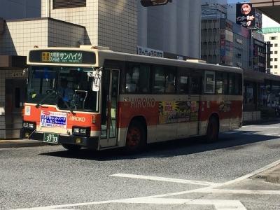 IMG_7675.jpg