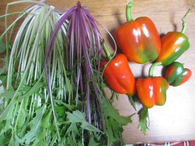 水菜とピーマン