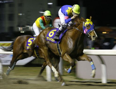 【競馬】ディープスカイの大逆襲始まる
