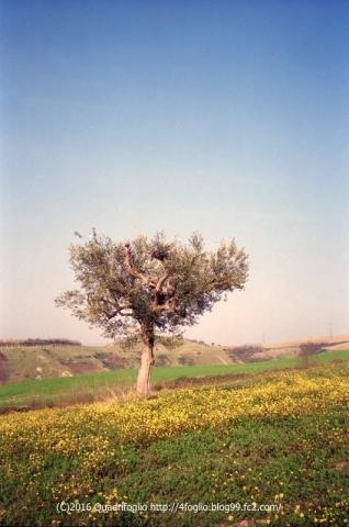 1998_1999Italia