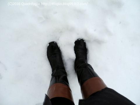 2016初雪?