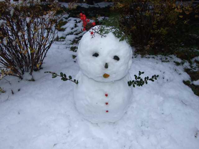 雪雪雪・・・・雪だるま