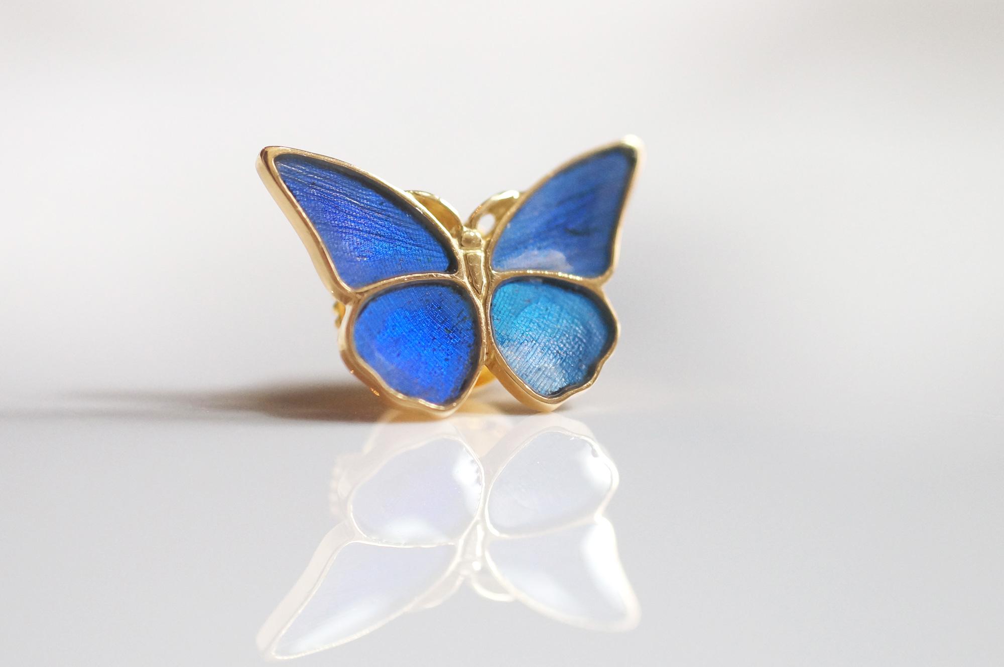 モルフォ蝶ブローチのオーダー