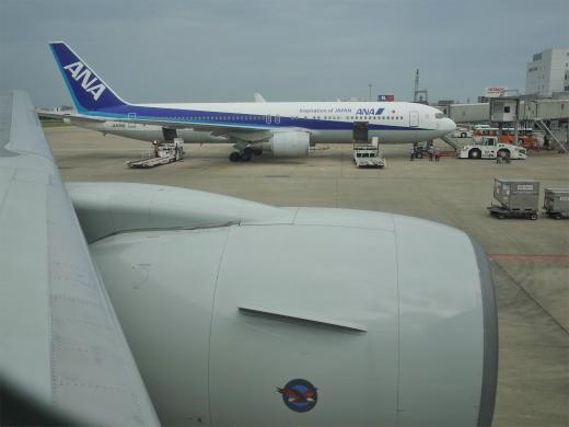 G0029003.jpg