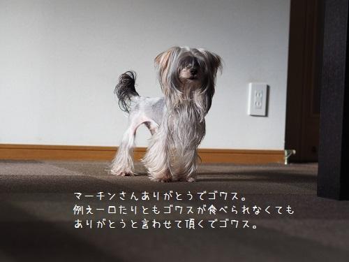 PA280008.jpg